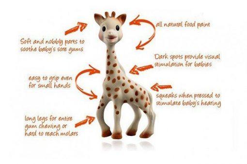Sophie the Giraffe Description